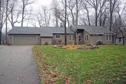 Photo of 3579 Tricklewood Drive, Grand Rapids, MI 49546 (MLS # 18055215)