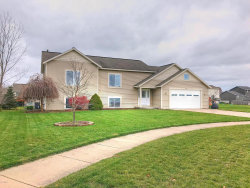 Photo of 11677 Spruceview Drive, Allendale, MI 49401 (MLS # 18057655)