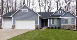 Photo of 6590 Annabelle Drive, Allendale, MI 49401 (MLS # 19001178)