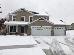 Photo of 238 Young Court, Rockford, MI 49341 (MLS # 19001378)
