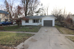 Photo of 530 E Thorn Street, Hastings, MI 49058 (MLS # 19002151)