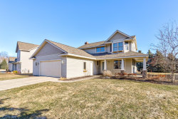 Photo of 10541 Hunters Creek Drive, Zeeland, MI 49464 (MLS # 19003789)
