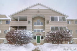 Photo of 8392 N Jasonville Court, Unit 49, Caledonia, MI 49316 (MLS # 19005390)
