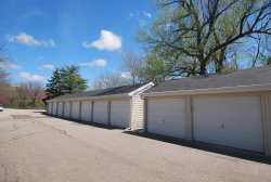 Tiny photo for 983 Lake Street, Unit 9, Saugatuck, MI 49453 (MLS # 19008214)