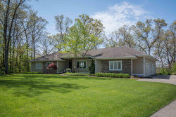 Photo of 8540 Longleaf Drive, Ada, MI 49301 (MLS # 19008887)