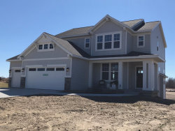 Photo of 7454 Macview Drive, Unit #14, Zeeland, MI 49464 (MLS # 19009017)