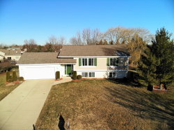 Photo of 1545 Lanyard Court, Zeeland, MI 49464 (MLS # 19010345)