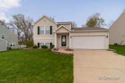 Photo of 1653 Wales, Lowell, MI 49331 (MLS # 19019548)