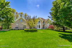 Photo of 7840 Clydesdale Drive, Ada, MI 49301 (MLS # 19022531)