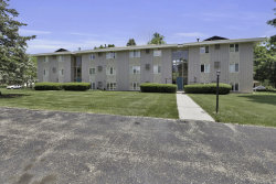 Photo of 2581 Ridgecroft Drive, Unit 102, Kentwood, MI 49546 (MLS # 19028854)