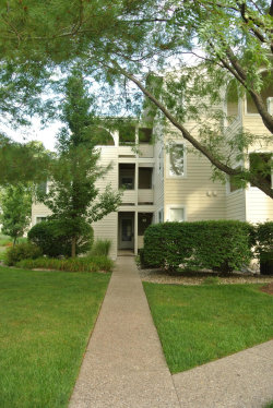 Photo of 983 Lake Street, Unit 10, Saugatuck, MI 49453 (MLS # 19031434)