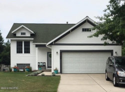Photo of 11011 Skyway Lane, Allendale, MI 49401 (MLS # 19032026)