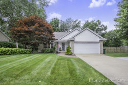Photo of 10987 Creekside Drive, Allendale, MI 49401 (MLS # 19034334)