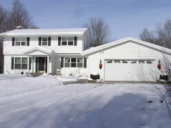 Photo of 10425 E Q Avenue, Scotts, MI 49088 (MLS # 19038509)