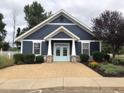 Photo of 958 Everett Parkway, South Haven, MI 49090 (MLS # 19044342)