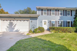 Photo of 219 Country Club Road, Holland, MI 49423 (MLS # 19046195)