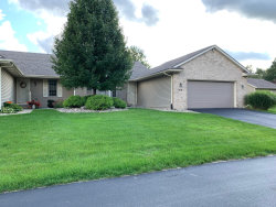 Photo of 407 Falcon Drive, Unit 10, Wayland, MI 49348 (MLS # 19046854)