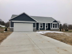 Photo of 11237 Wild Duck Lane, Allendale, MI 49401 (MLS # 19049848)