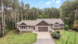 Photo of 2135 Sunny Pine Drive, Dorr, MI 49323 (MLS # 19051247)