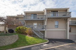 Photo of 69 North Shore Drive, Unit 10, South Haven, MI 49090 (MLS # 19053573)