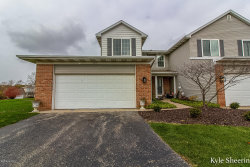 Photo of 5390 Rivertown Circle, Unit 33, Wyoming, MI 49418 (MLS # 19055229)