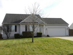 Photo of 3974 144th Avenue, Holland, MI 49424 (MLS # 19055401)