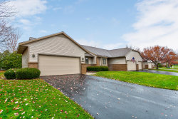 Photo of 1687 Lakeview Drive, Zeeland, MI 49464 (MLS # 19056208)