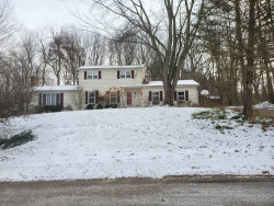 Photo of 1148 Hillview Drive, Hastings, MI 49058 (MLS # 19057805)