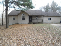 Photo of 15194 Kelly Street, Spring Lake, MI 49456 (MLS # 19057872)