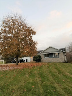 Photo of 3270 100th Street, Byron Center, MI 49315 (MLS # 19059049)