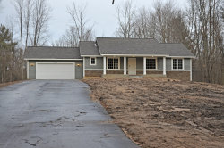 Photo of 3435 Woodland Trail, Allegan, MI 49010 (MLS # 20000784)