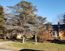 Photo of 2595 134th Avenue, Hopkins, MI 49328 (MLS # 20001198)