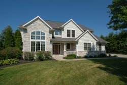 Photo of 8412 Grapevine Circle, Mattawan, MI 49071 (MLS # 20001350)