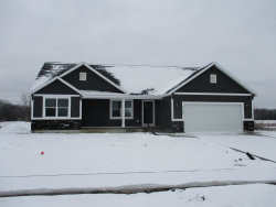 Photo of 5458 Camfield Drive, Allendale, MI 49401 (MLS # 20001646)