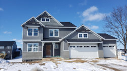 Photo of 6893 City View, Hudsonville, MI 49426 (MLS # 20001679)