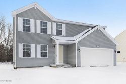 Photo of 58536 Blue Stem Circle, Mattawan, MI 49071 (MLS # 20001806)