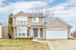 Photo of 3440 Clear View Drive, Holland, MI 49424 (MLS # 20002274)