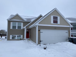 Photo of 1329 Ellery Grove Court, Vicksburg, MI 49097 (MLS # 20002717)