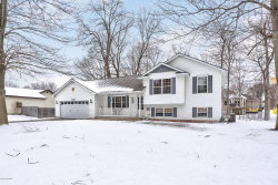 Photo of 15409 Lincoln Street, Grand Haven, MI 49417 (MLS # 20005217)