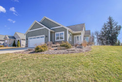 Photo of 9592 Bluff Lake Street, Zeeland, MI 49464 (MLS # 20010608)