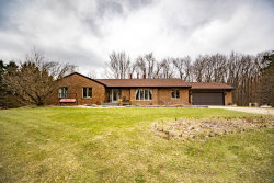 Photo of 3459 138th Avenue, Hamilton, MI 49419 (MLS # 20011285)