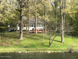 Photo of 12452 N Sherman Lake Drive, Augusta, MI 49012 (MLS # 20011450)