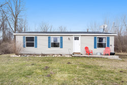 Photo of 6039 126th Avenue, Fennville, MI 49408 (MLS # 20011625)