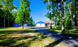 Photo of 1848 Lincoln Street, Allegan, MI 49010 (MLS # 20015186)