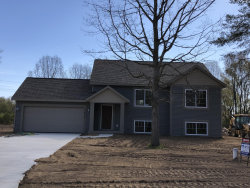 Photo of 3629 Urban Depot Court, Wayland, MI 49348 (MLS # 20016013)