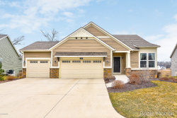 Photo of 3173 Braeburn Ct, Unit 17, Jenison, MI 49428 (MLS # 20016592)