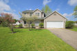 Photo of 56410 Buffalo Drive, Three Rivers, MI 49093 (MLS # 20016851)