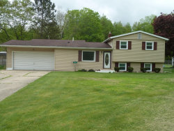 Photo of 5414 Hoag Road, Battle Creek, MI 49015 (MLS # 20018129)