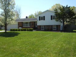 Photo of 2086 Mulberry Lane, Jenison, MI 49428 (MLS # 20018961)