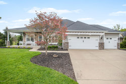 Photo of 6226 Saddle Ridge Court, Kalamazoo, MI 49009 (MLS # 20019029)